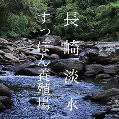 制作実績「長崎淡水」